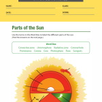6th grade science worksheets 4