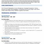 Account Director Resume Sample 1