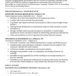 Accounting Student Resume Sample 4