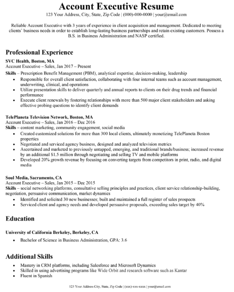 Accounts Executive Resume Sample 2