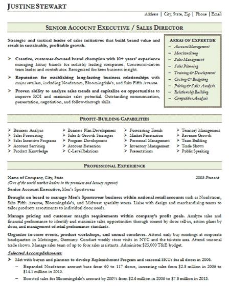Accounts Executive Resume Sample 3