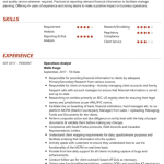 Associate Operations Analyst Resume Sample 2