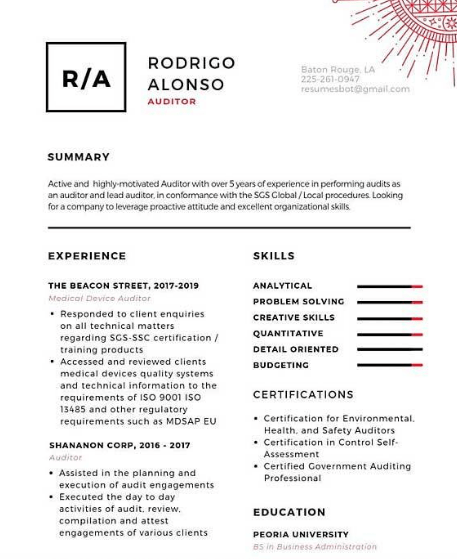 Auditor Resume Example 5
