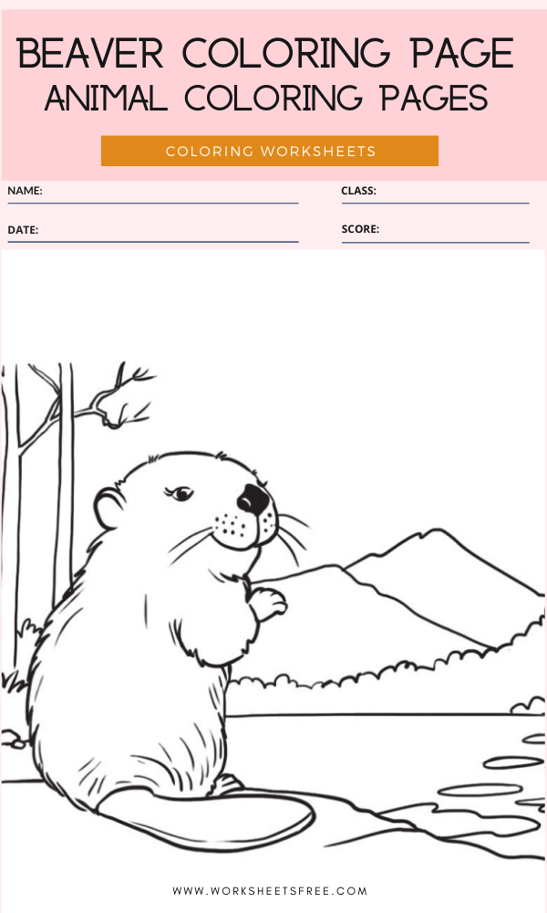 Beaver Coloring Page - Animal Coloring Pages Worksheets