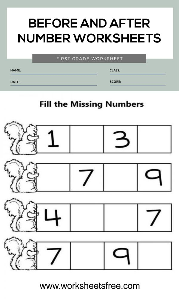 Before and After Number Worksheets 4