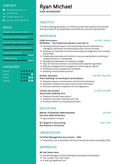 Chief Accountant Resume Sample 2