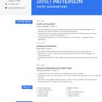 Chief Accountant Resume Sample 4