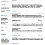 Compliance Manager Resume Sample 2