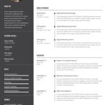 Digital Marketer Resume Sample 3