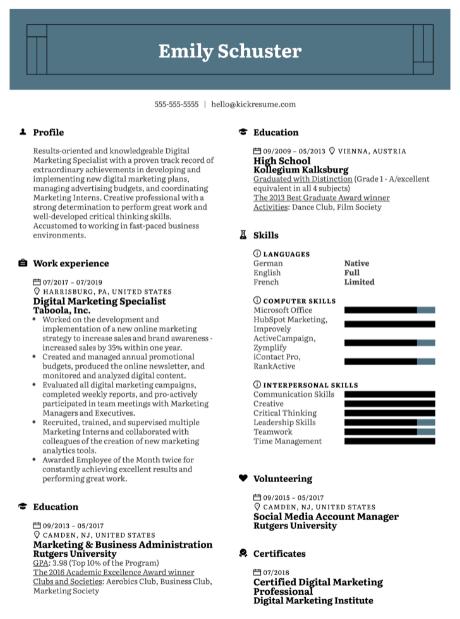 Digital Marketing Expert Resume Sample 2