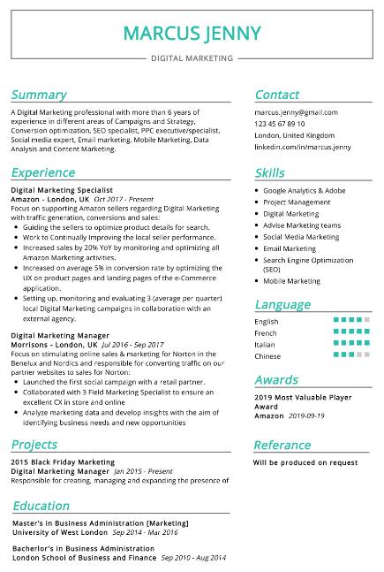 Digital Marketing Expert Resume Sample 4