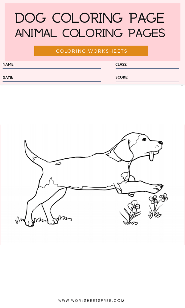Dog Coloring Page - Animal Coloring Pages Worksheets