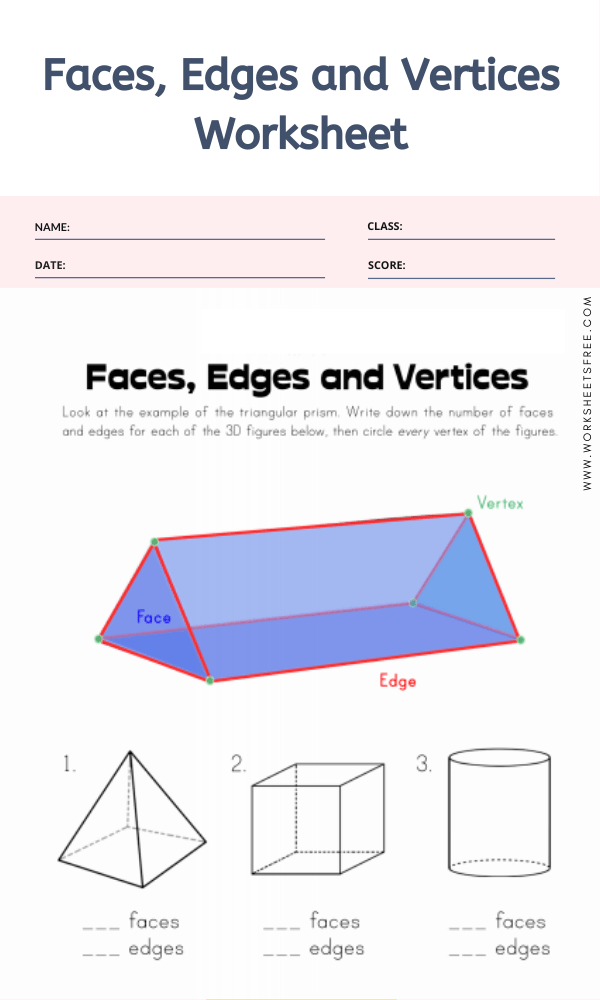 Faces, Edges and Vertices Worksheet