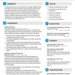 Finance Director Resume Sample 1