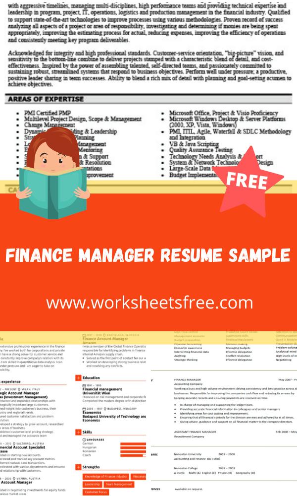 Finance Manager Resume Sample