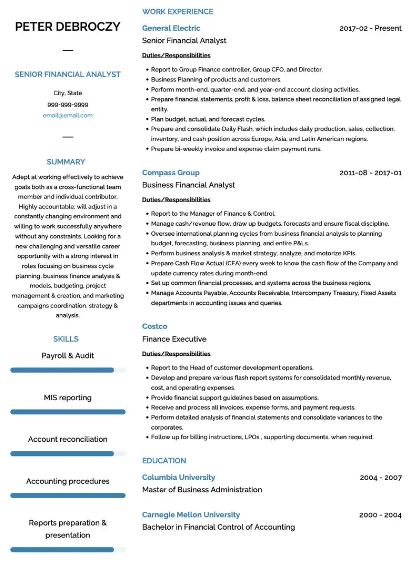Financial Analyst Resume Example 5