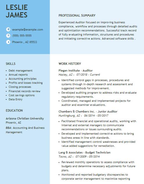 Group Internal Auditor Resume Sample 4