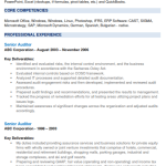 Group Internal Auditor Resume Sample 5