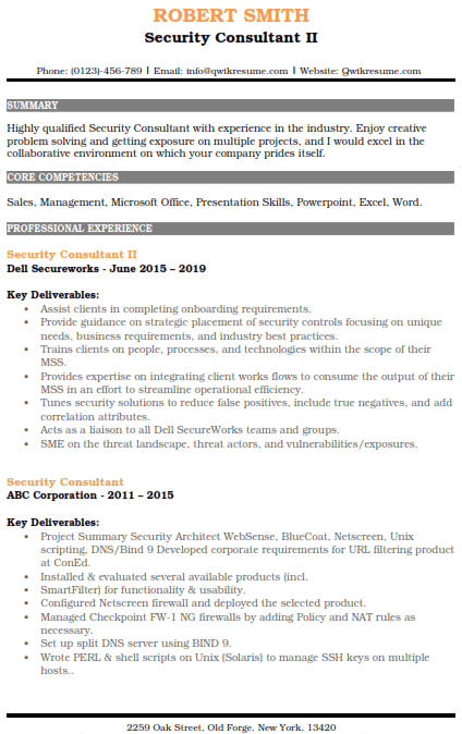 Information Security Consultant Resume Sample 2