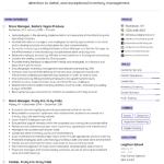 Online Store Manager Resume Sample 3