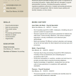 Payroll Specialist Resume Example 2