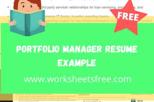 Portfolio Manager Resume Example