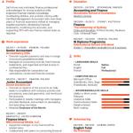 Senior Accountant Resume Example 4