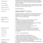 Senior Auditor Resume Sample 1
