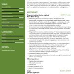 Senior Auditor Resume Sample 5
