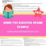 Senior ITES Executive Resume Example