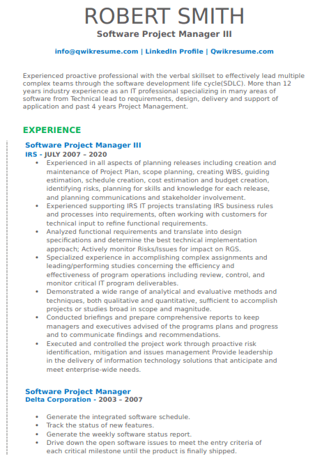 Software Project Manager Resume Sample 3