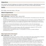 Web Application Developer Resume 4