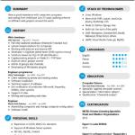 Web Developer Resume Sample 3