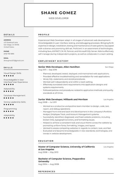 Web Developer Resume Sample 4
