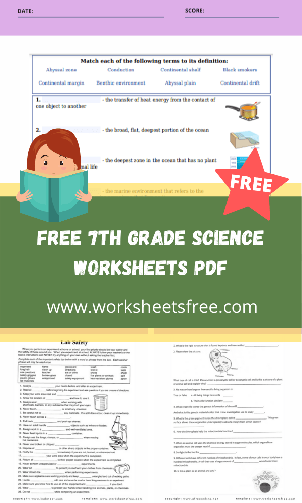 free 7th grade science worksheets pdf