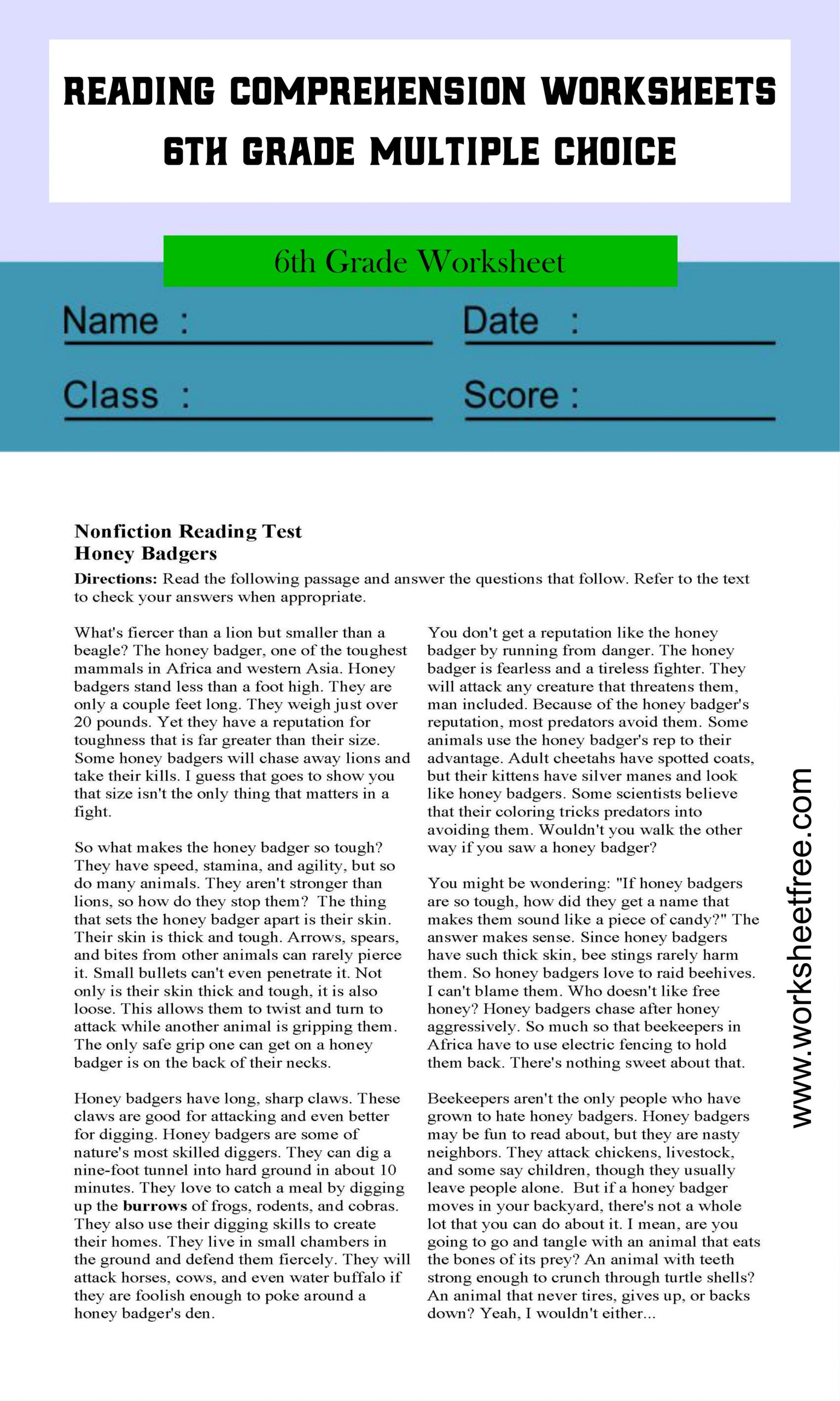 Reading Comprehension Worksheets 6th Grade Multiple Choice