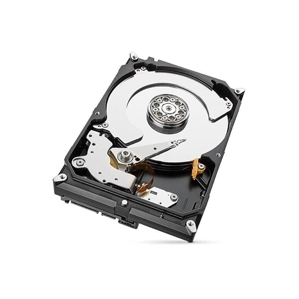 SEAGATE SkyHawk 4To FACE 3