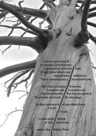 White Tree death resurrection poem