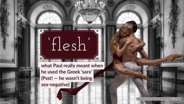 "Ballet dancers in a ballroom. The man has his bare back to the camera holding the woman. She wraps her arms calmly around his body. She has blonde hair and is wearing dark red. The colour contrasts against the monochrome background of the room. Text: ""Flesh: what Paul really meant when he used the word 'sarx' (Psst! — he wasn't being sex-negative)"""