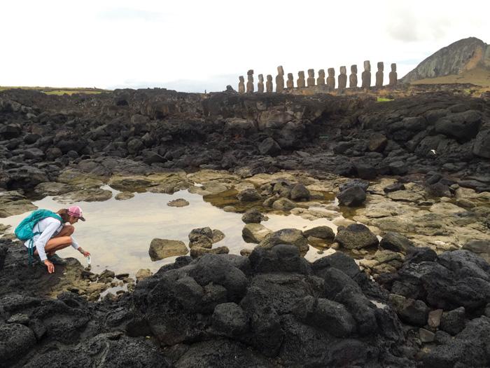 Tanya Brosnan studies a coastal freshwater seep behind moai