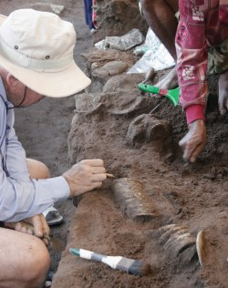 Bangles being excavated from a burial