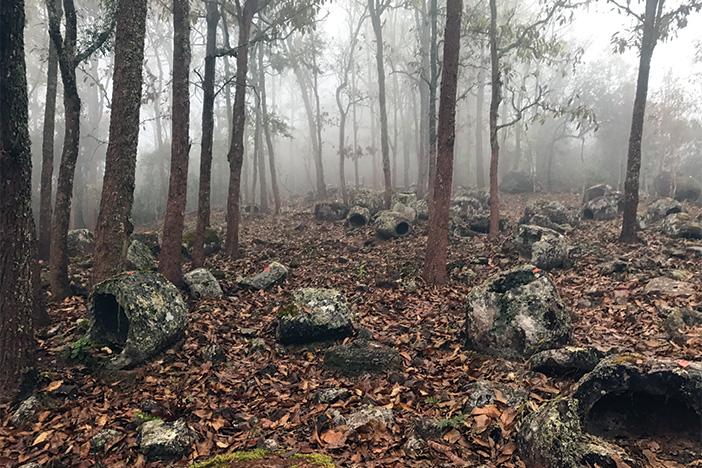 A large number of stone jars in misty woodland