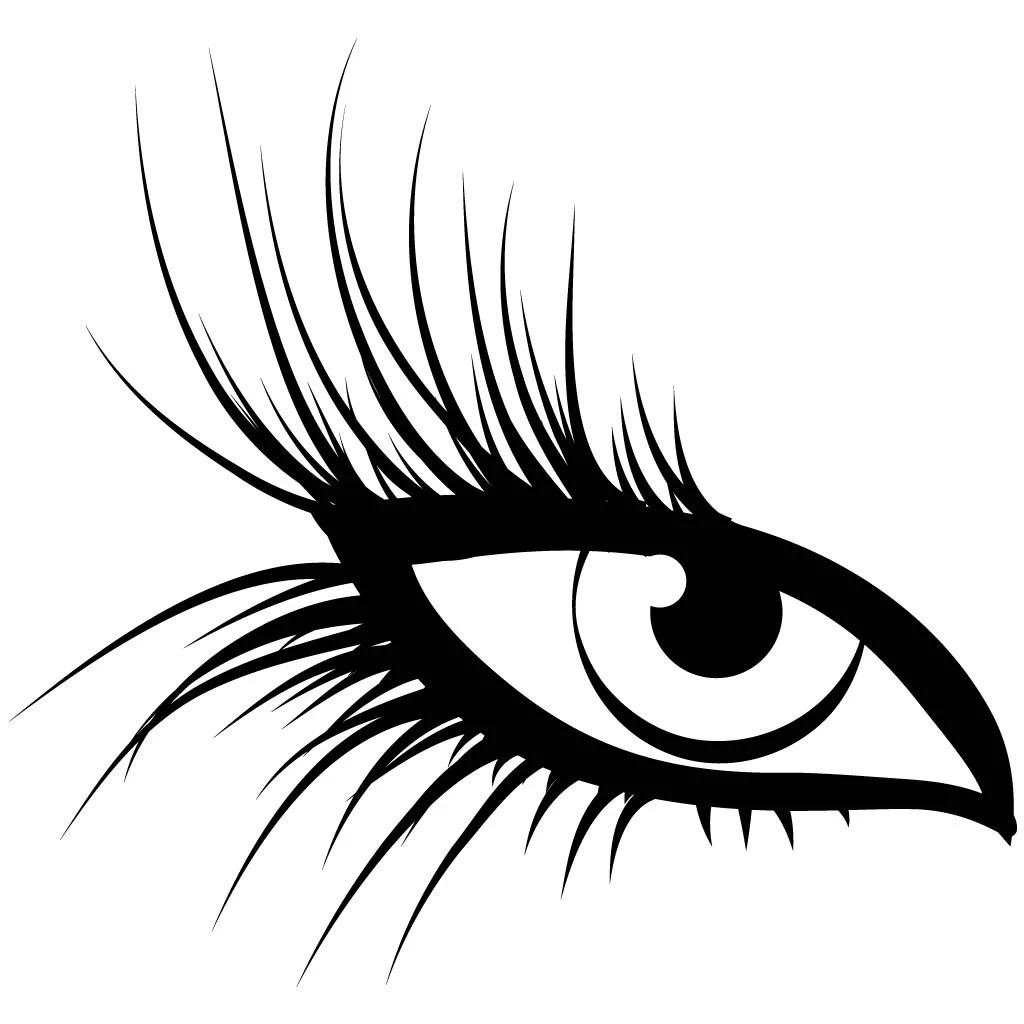 Large Eye Lashes Wall Sticker