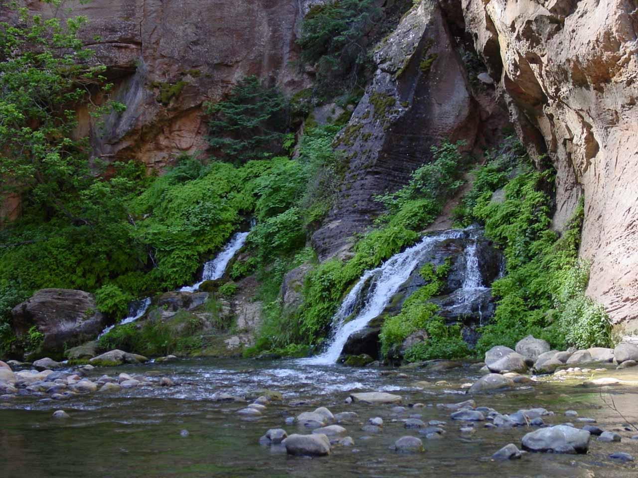 Zion Narrows Waterfalls Zion National Park Utah USA
