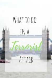 terrorist-attack-pin