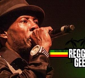 Reggae Geel Report