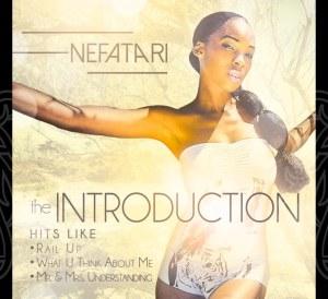nefatari_theintroduction