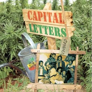 Vinyard Capital Letters