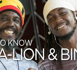 Mc-Alion & Bingi