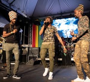 Bob Marley's 74th Birthday Celebrations 2019